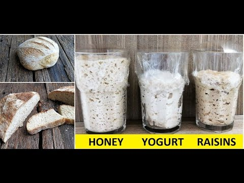 How To Make A Sourdough Starter - 3 Easy Ways