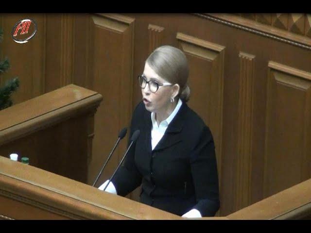 Юля Тимошенко про продаж землі виступає на мітингу 17.12.2019