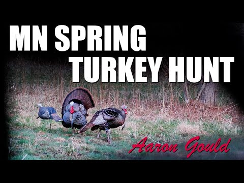 Spring Turkey Hunting with my Boys | Aaron Gould