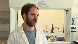 L'Ifremer au chevet des coquillages pour étudier leurs pathologies