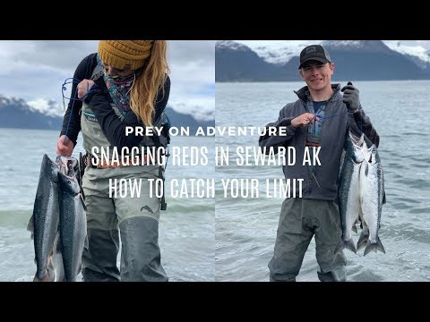 Snagging Reds In Seward Alaska - How To Catch Your Limit!