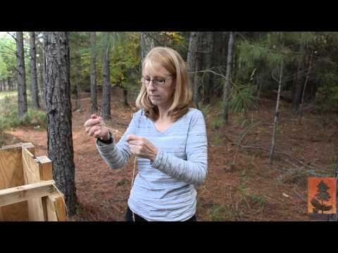 AU How To - Pine Straw Baler