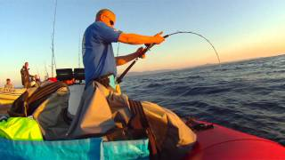 jigging : Jigging Master FREE JIGGER 200B CUSTOM  vs Big Bluefin Tuna 130LBS