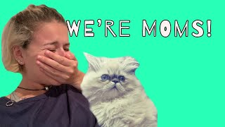 GETTING OUR CAT! | Sam & Sara