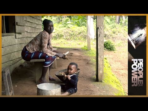 Cameroon: From Africa's Palms l People and Power | 26 Feb 2015