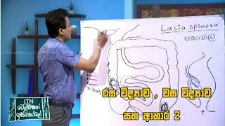 ITN Television Iskole - (2020-08-02) | ITN Thumbnail