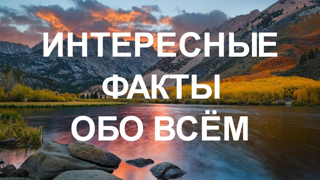 Новосибирск фотосессия красками фото пирожки можно