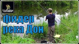 Фидерная ловля.  Рыбалка на реке Дон.  (LiveFishing)(Фидерная ловля. Рыбалка на реке Дон. Подписывайтесь на канал: https://www.youtube.com/c/LiveFishingChannel?sub_confirmation=1 Мои самоде..., 2016-06-22T08:30:01.000Z)