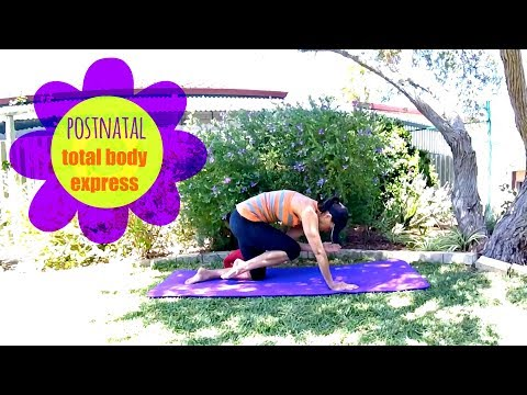 Post Pregnancy Workout - BARLATES BODY BLITZ Postnatal Total Body Express for Diastasis Recti