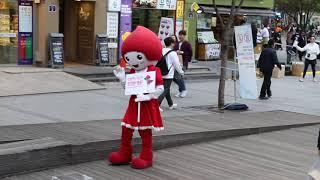 JHKTV]신촌 명물고양이업타운펑크 shin chon special cat uptown punk