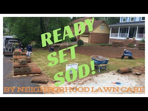Sod installation and irrigation system installation from start to finish