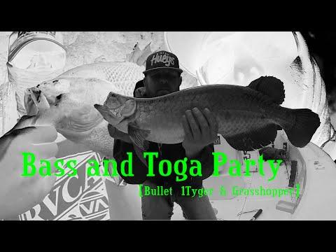 Saratoga and Bass Fishing Queensland
