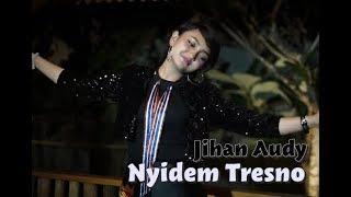 Nyidem Tresno - Jihan Audy ( Lirik )