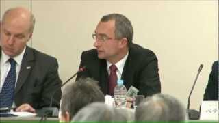 中央ヨーロッパから見たEUと日本:ヴィシェグラード4ヵ国との対話