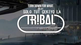 DJ Snake  Lil Jon ft. Sülo Tut Çekiyo La - TDFW
