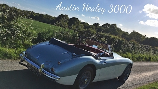 Austin Healey 3000 | Passenger Seat Review