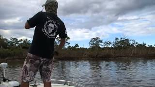FLY fishing Brisbane, Gold, Sunshine Coast, フライフィッシング ブリスベン オーストラリア