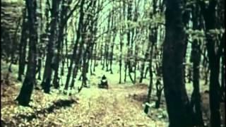 Край родной (из фильма