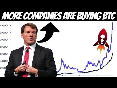 Michael Saylor Gives a Warning!! An Avalanche of Large Capital is Coming into Bitcoin!! GET READY!!