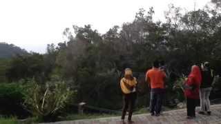 Puncak Gunung Jerai