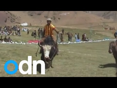 Spot of yak polo anyone? Remote Broghil Valley of Pakistan shows off sport