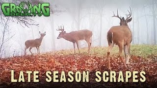 Deer Hunting Hot Spots: Late Season Whitetail Scrapes