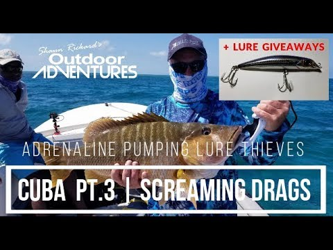 Cuba Pt. 3 | Screaming Drags & Adrenaline Pumping Lure Thieves | Fishing Cayo Coco