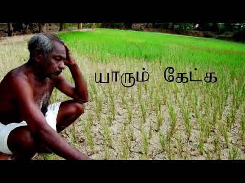 song agriculture