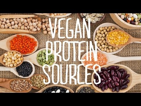 Vegan Protein Sources & Meat Substitutes   Fablunch