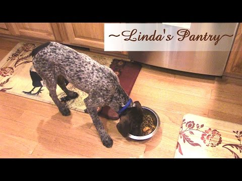 ~How To Make Homemade Dog Food Add On With Linda's Pantry~