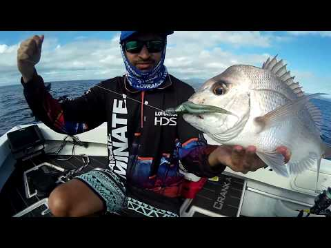 Finding Snapper on the Gold Coast with Lowrance HDS Carbon