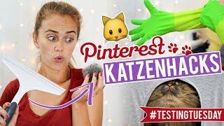 Die COOLSTEN KATZENHACKS im Test feat. SPECIAL GUESTS 🐱 #testingtuesday   SNUKIEFUL