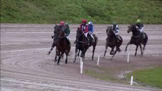 Vidéo de la course PMU PRIX FLECHE BOURBON