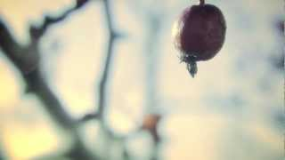Restless - 2012 Reelie Short Film