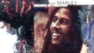 The Heathen ( Dub Remix) - Bob Marley