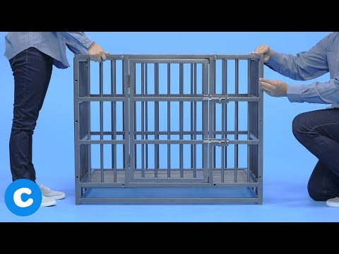 How To Assemble the Frisco Ultimate Heavy Duty Steel Metal Dog Crate | Chewy