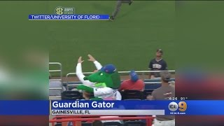 School's Alligator Mascot Saves The Day -- And A Kid -- In The Line Of Errant Softball