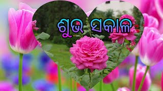 Odia Sms Good Morning