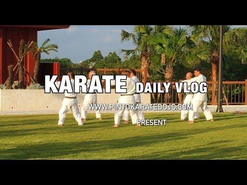 DESAFIO EM OKINAWA - Karate Daily Vlog # 23