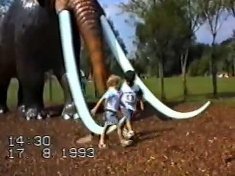 Thorpe Park August 1993