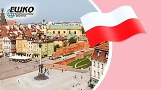 Особенности польского произношения. Этикетные формы знакомства, приветствия, прощания...