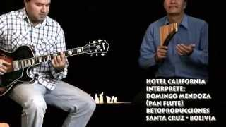 Hotel California - Domingo Mendoza (Pan Flute