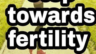 Tips To Improve Fertility