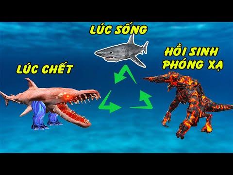 GTA 5 - Quá khứ đầy nước mắt của tôi Cá mập phóng xạ Sharkjira nham thạch   GHTG
