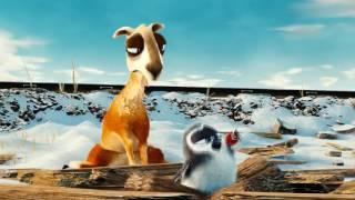 Смешной мультфильм.  Животное Лама.