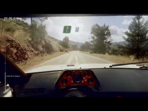 Dirt Rally 2.0  Volant Thrustmaster T300 Rs