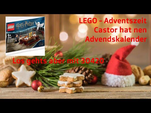 LEGO 30420 - Polybag Harry Potter and Hedwig Owl Auftakt in die Weihnachtszeit