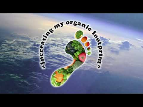 My Organic Footprint