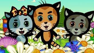 ТРИ КОТЕНКА - Все песенки о животных! - Сборник - Мультики-песни для детей