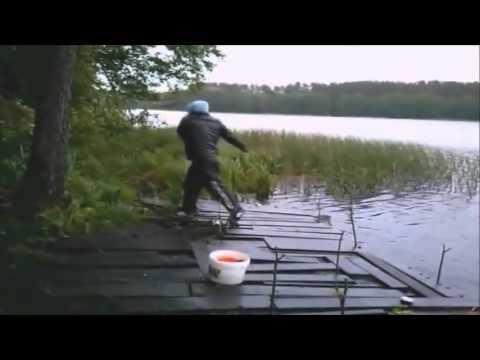 Видео приколы на рыбалке -